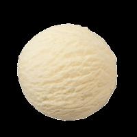 Vanille Schepijs per 5 liter